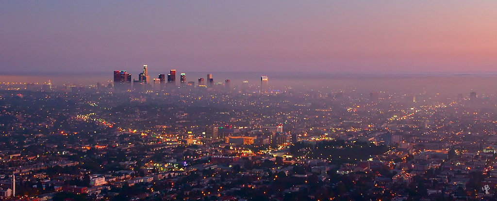 Cute Chow Chow Wallpapers Downtown Los Angeles Dusk Ronald Chow Flickr