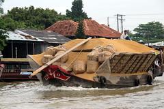 Rice Husk Boat