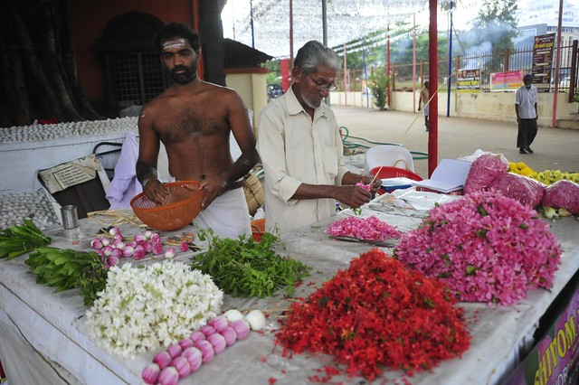 The flourists, Kochin, India