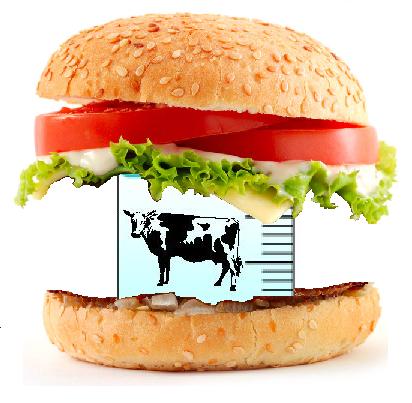 Laboratory Hamburger