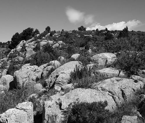 El ramat de pedra by El Cantinal