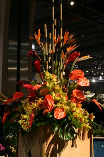 Hawaii Anthurium display