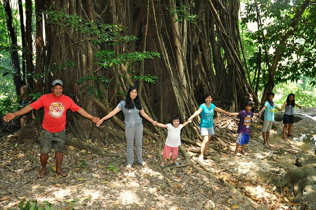 Around the Balete Tree