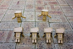 Danbo Boot Camp