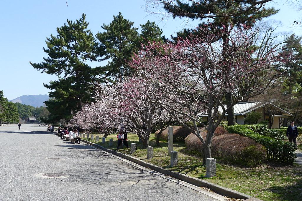 magnetic-rose.net Kyoto Imperial Palace, Kyoto Gyoen, and Kiyomizudera