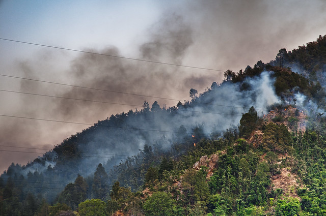 Shimla Hills - Kandaghat - Day Time view of a Forest fire taking off in the Himalayas