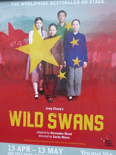 Wild Swans at the Young Vic, theatre poster