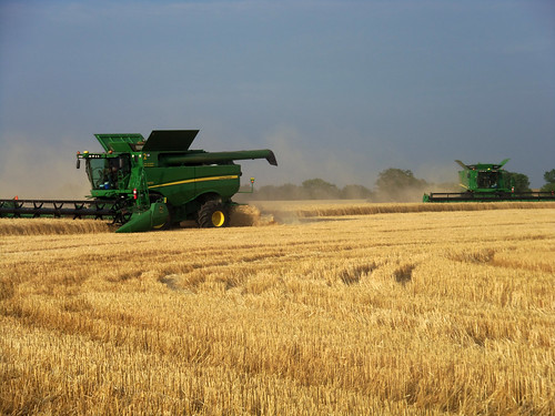 Harvesting wheat in Kiowa Kan