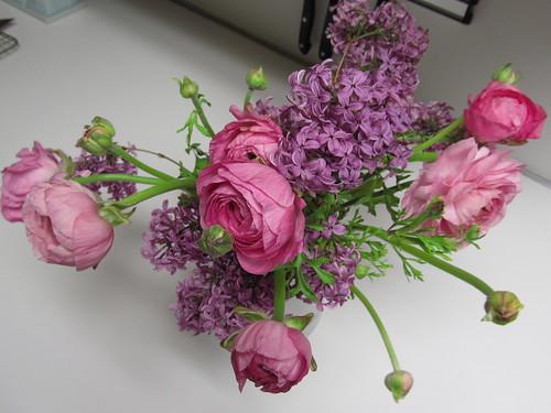 runonculus & lilac