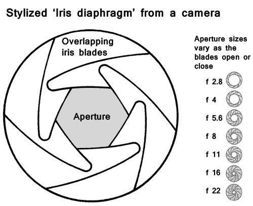 Diaphragm Iris Definition Photokonnexion. An 'iris Diaphragm' As Used In Modern Dslr. GM. Diagram Of A Diaphragm At Scoala.co