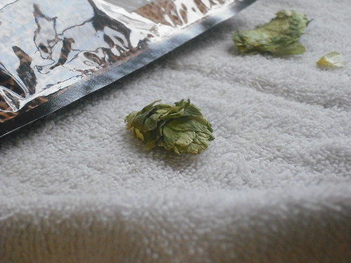 Whole Dried Hops