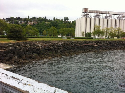 High Tide Marks in Seattle