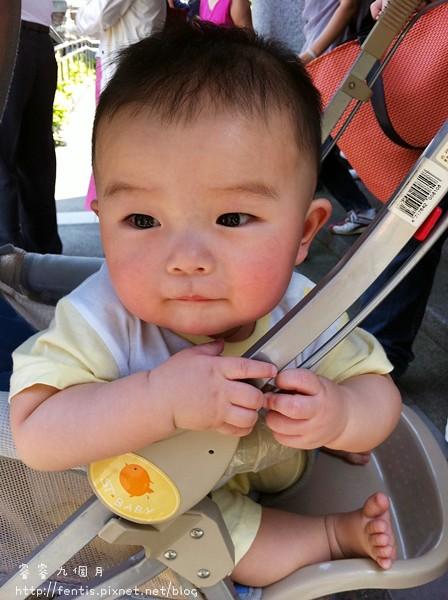 【育兒】睿睿九個月小記-快速爬行 @ 平凡的美好 :: 痞客邦
