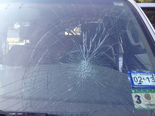windshield after hawk dove into it on highway
