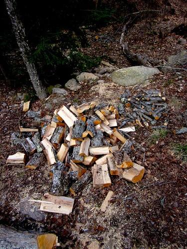 maple pile
