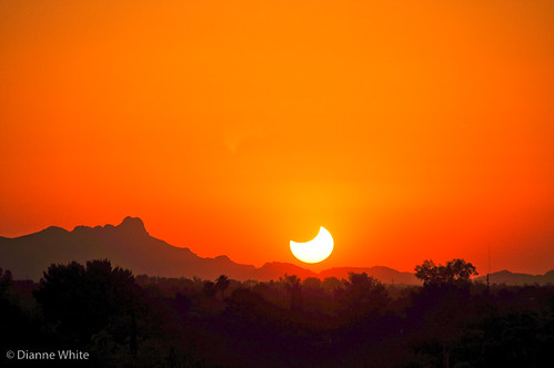 Solar Eclipse Landscape