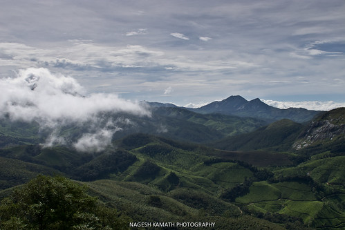 Nilgiris View from Eravikulam