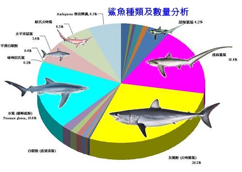 DNA檢測證明 臺灣人吃鯊幾乎格「鯊」勿論 | 環境資訊中心