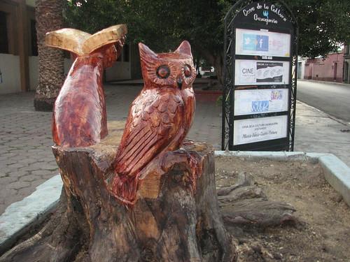 Bujo = Owl @ Oaxaca 06.2012