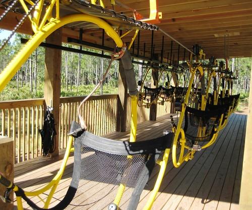 Cypress Canopy Cycle, Florida EcoSafaris, St. Cloud, Fla.
