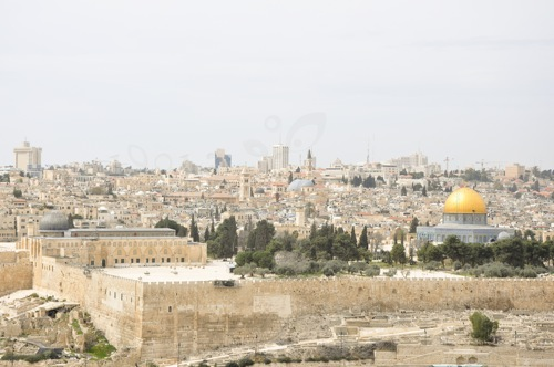 Ierusalim (1 of 1)-90