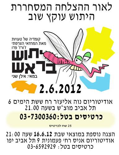 הזמנה להצגה יתוש בראש