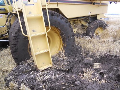 TR stuck in mud