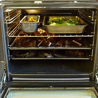 Tang og tare i ovnen