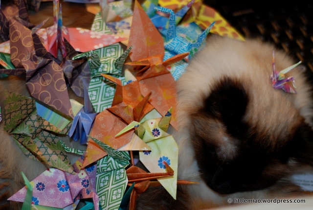 mani and the origami cranes
