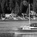 Deep-Cove-Photowalk_MG_2625-Edit