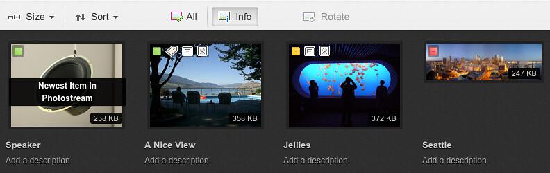 Flickr Web Upload UI: Info View