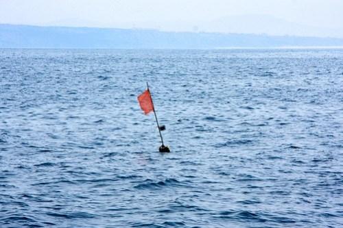 Slike stående bruk er det hele veien langs kysten hvis man seiler på 30 - 80 meters dybde