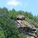 Half Way down the Gorge