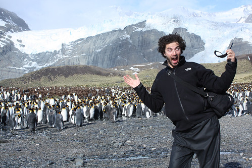 Some Asshole In Front of Penguins by happyjoelmoss