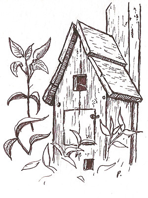 dawn's birdhouse