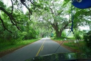 Hope Plantation Lane