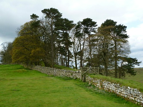 A chance to walk on Hadrian's Wall