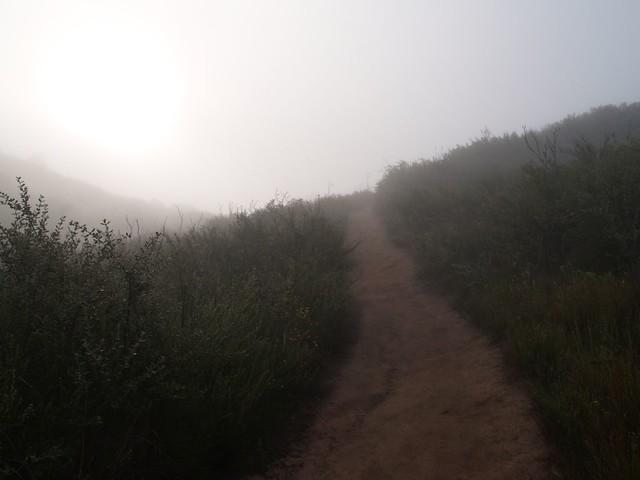 Zero Visibility in the fog