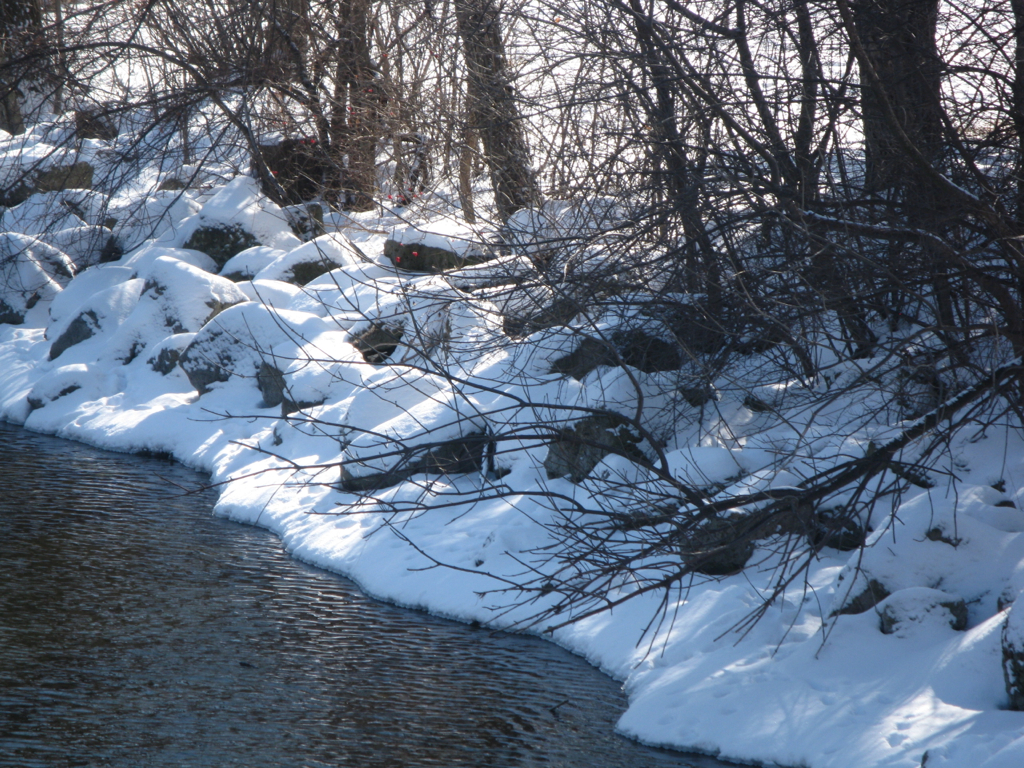 Yahara River, Jan. 2012