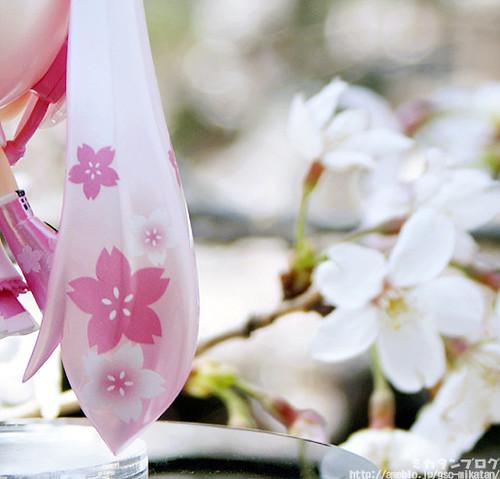 Cherry blossom (sakura) prints on her hair