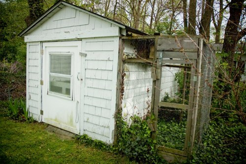 outdoor shed: my dream office