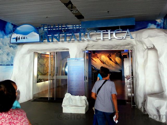 Manila Ocean Park's Antartica