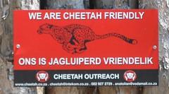 We Are Cheetah Friendly