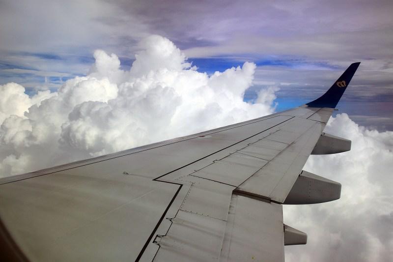 飛翔的翅膀