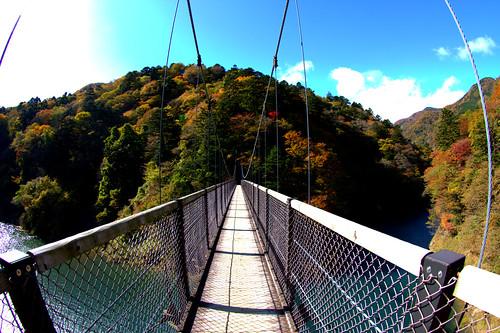 回顧の吊り橋