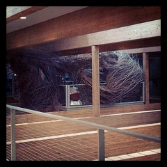 "Another view of the ""nest"" at the Wooden and Kennedy office, Portland, or"