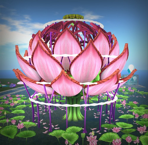 The Lotus Stage, photographed by Ami Tamura