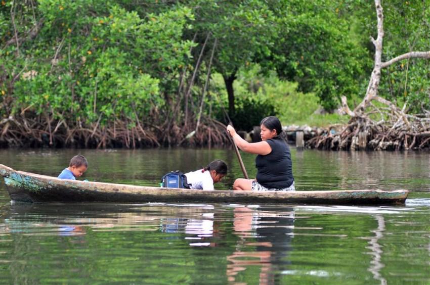 Es común ver a familias o yendo a la escuela en artesanales canoas talladas en troncos de árbol Bocas del Toro, escondido destino vírgen en Panamá - 7598178578 9c4fff3bc0 o - Bocas del Toro, escondido destino vírgen en Panamá