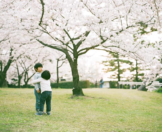 magical spring #10