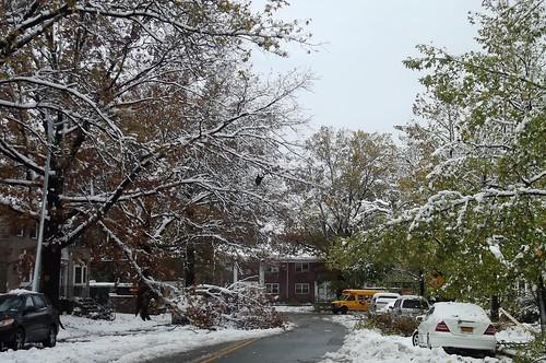 Snow in Bayside - 07Nov2012